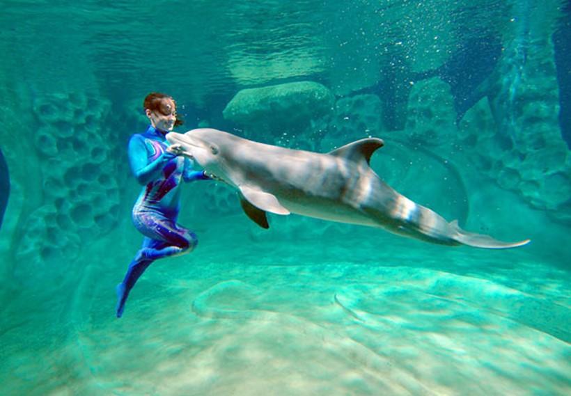 Беременная женщина и дельфин акушер 0 12e237 b7f86d68 orig