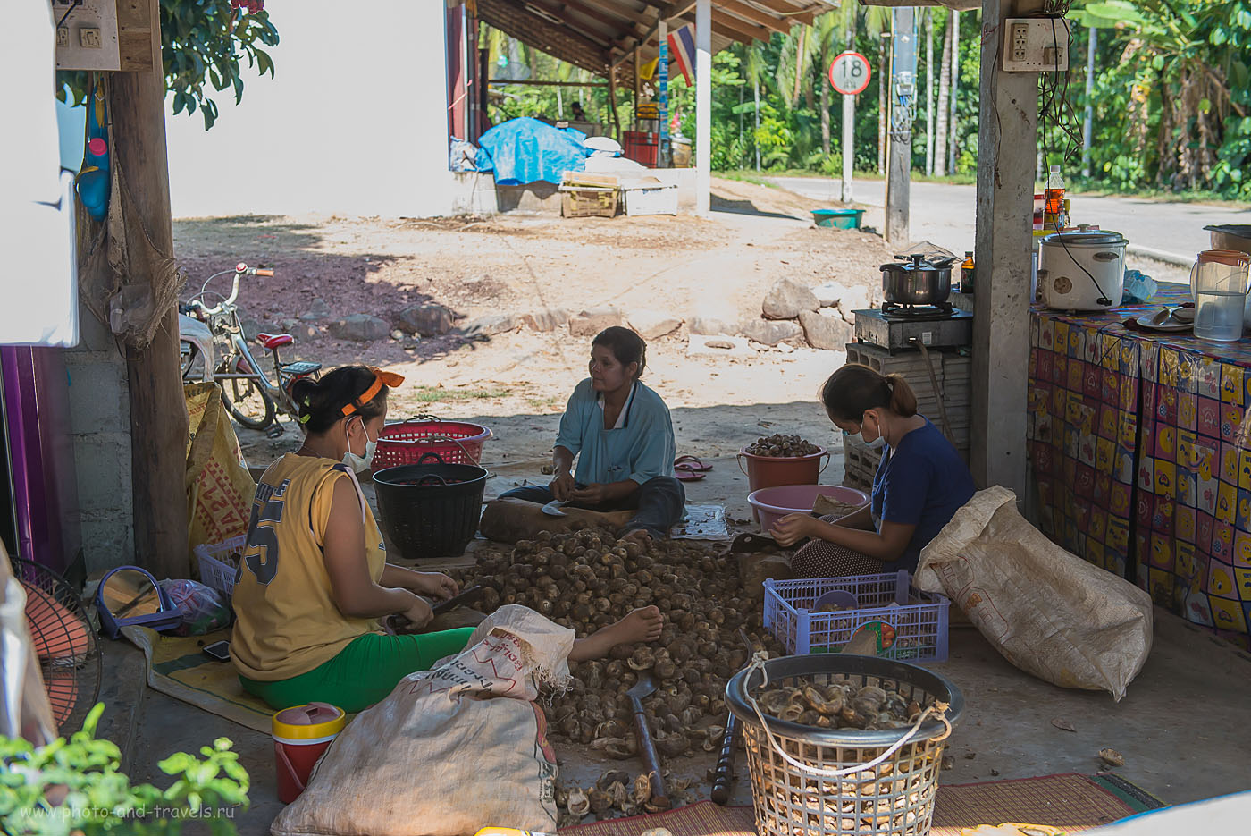 Фото 4. Поездка в город Ранонг в Таиланде. Рутина в тайской деревне (800, 48, 4.5, 1/500)
