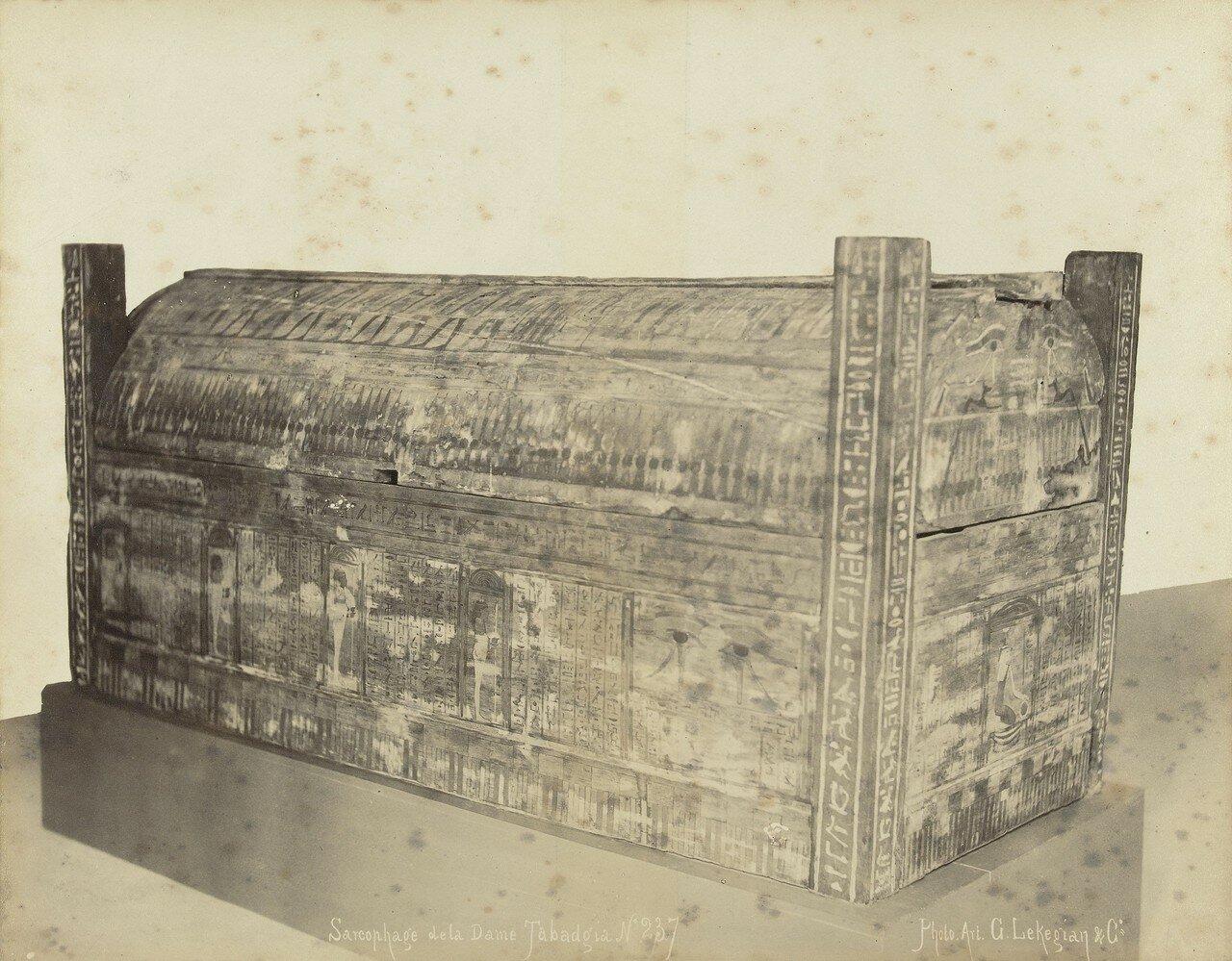 Окрашенный саркофаг,1888