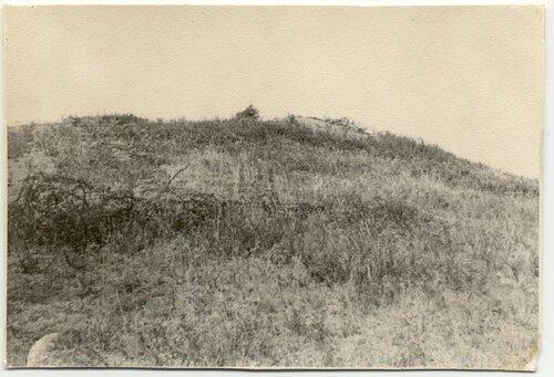Колючая проволока на безымянной высоте у села Дмитриевка... она еще помнит атаки яростные те...