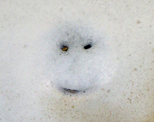Пенная улыбка
