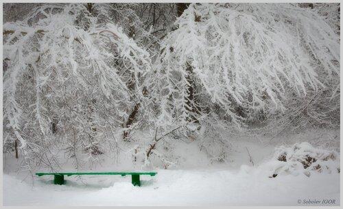 Зимняя дрёма