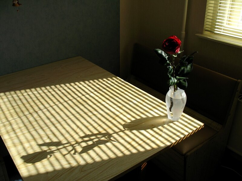 Тень от розы