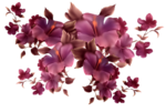 flowers 55041.png