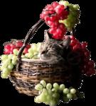 Кошки 5 0_50a11_2ee32970_S
