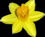 «ZIRCONIUMSCRAPS-HAPPY EASTER» 0_53d84_a5ea7565_S