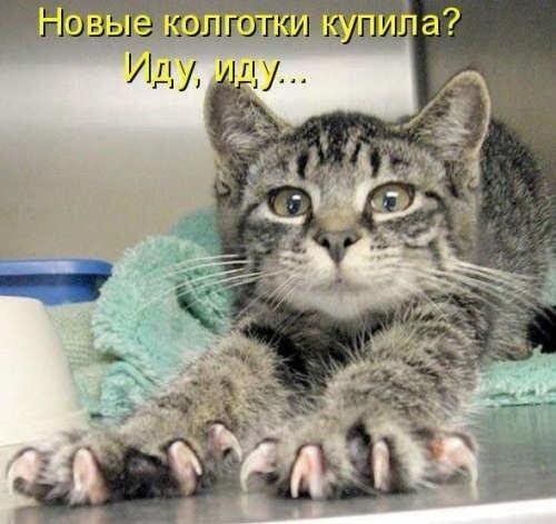 http://img-fotki.yandex.ru/get/5506/124059564.0/0_667d9_7049de91_L.jpg