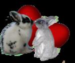 Rabbit 6.png