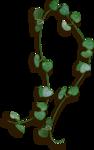 KD_BN_leaves1_sh.png