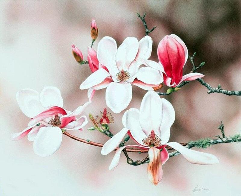 И вновь цветением наполнится земля. Художник Heidi Willis