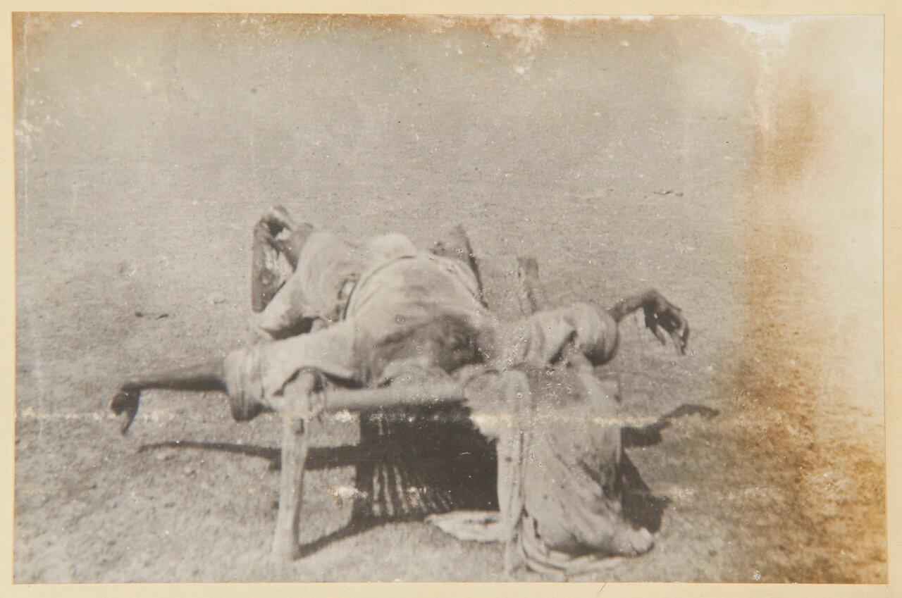 Убитый эмир баггаров