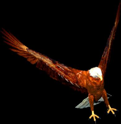 Ptice..... 0_85fe7_e2c519ff_L