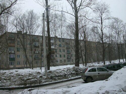 Полюстровский пр. 19к1