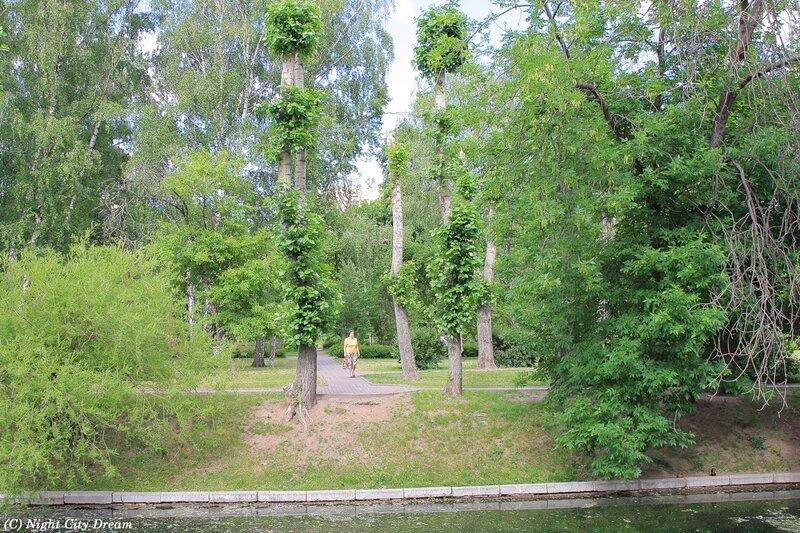 7 московский форум москвичам здоровый образ жизни