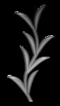 «Charcoal par PubliKado.PU-CU.GR» 0_60a8c_3d9c515d_S
