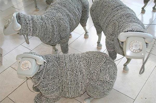 овцы из телефонов