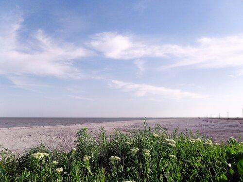 19 мая 2011. Велопоход на Ясенскую косу