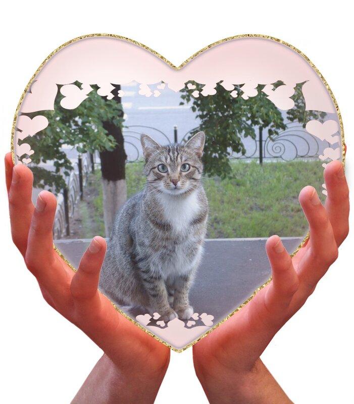 Сердце Банде