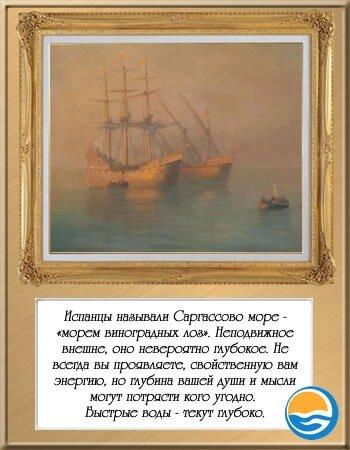 саргассово