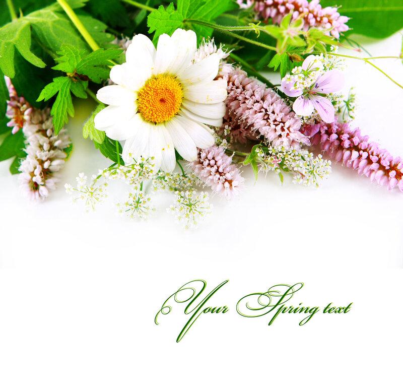 Текст на открытку в цветы, днем матери