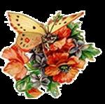 Бабочки  0_6b156_92c4fbcb_S