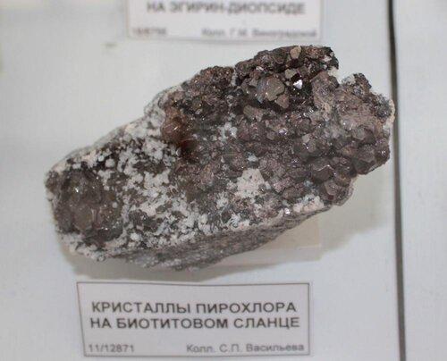 Кристаллы пирохлора на биотитовом сланце