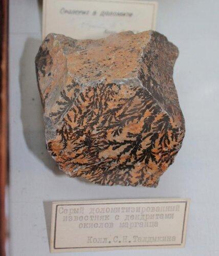 Серый доломитизированный известняк с дендритами окислов марганца