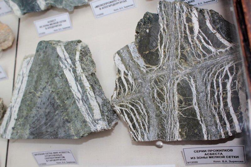 Крупная сетка жил асбеста, отороченных серпентинитом в гарцбургитах; серии прожилков асбеста из зоны мелкой сетки