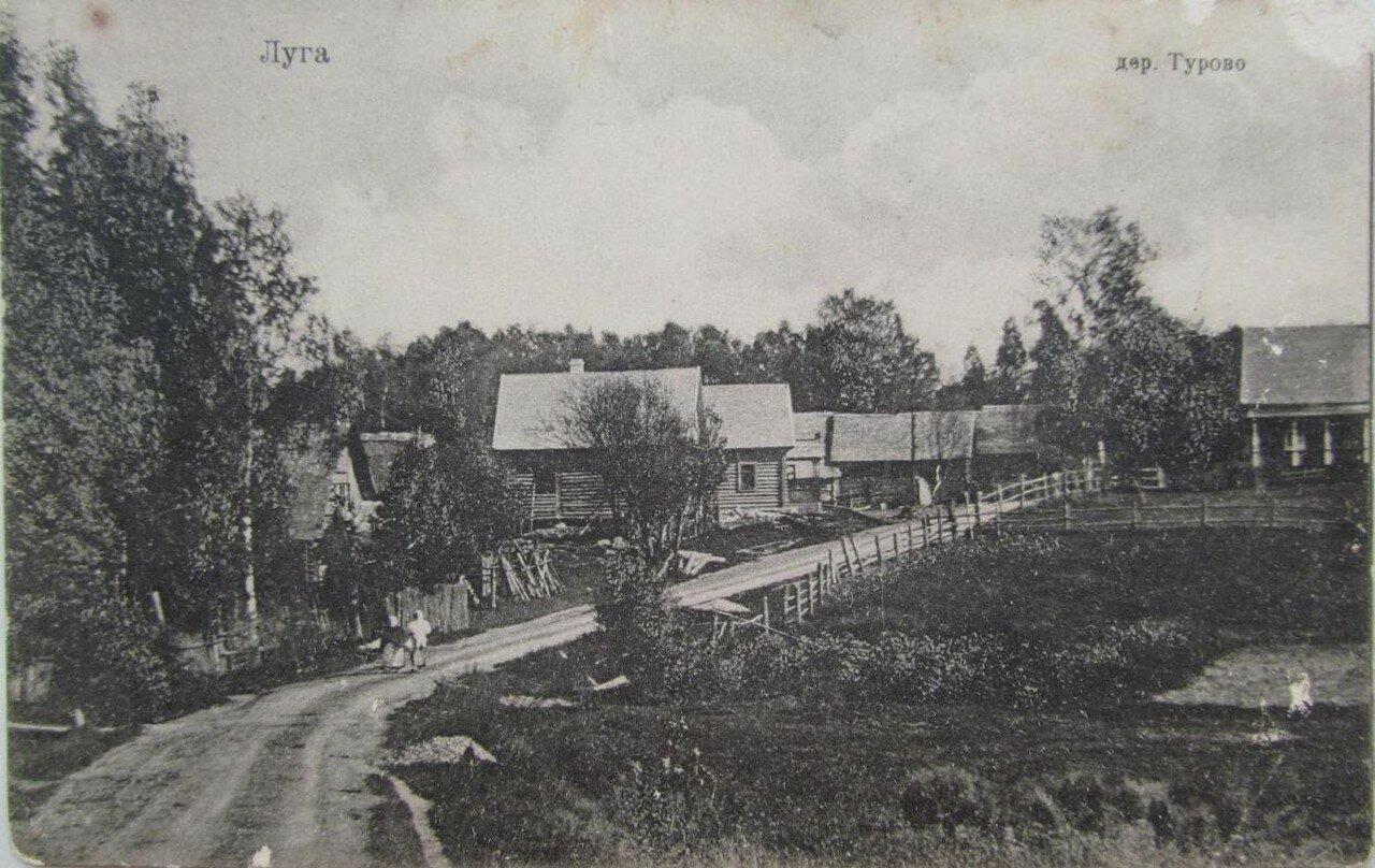 Окрестности Луги. Деревня Турово