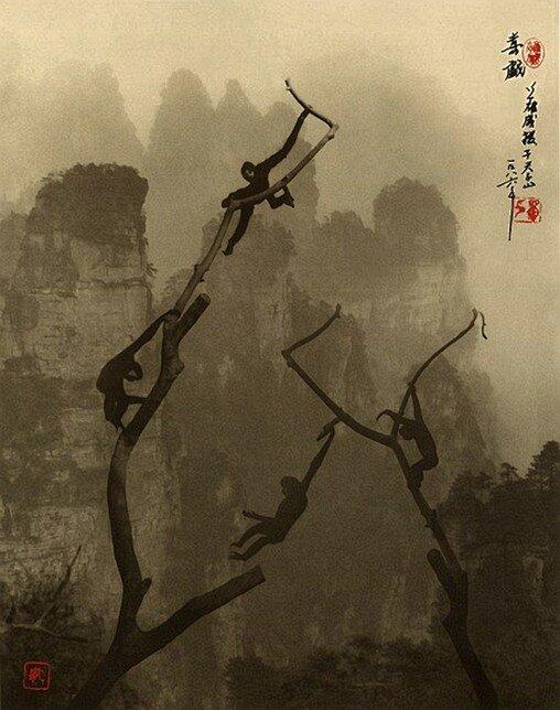 Фотоживопись Дон-Хонг Оай. Слияние традиций и современного фотоарта.