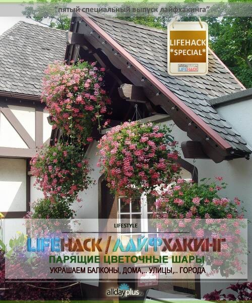 LIFEHACK SPECIAL / Выпуск 5-й Специальный. Подвесные цветочные шары