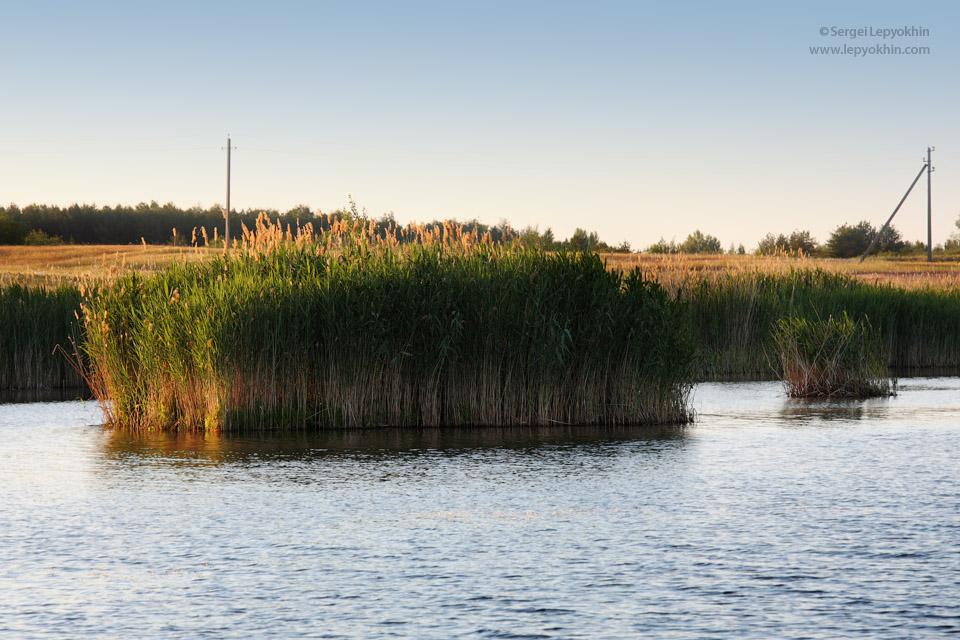 Закат на Бабинских озерах с плавающими островами. Фотопоездка по Волгоградской области.