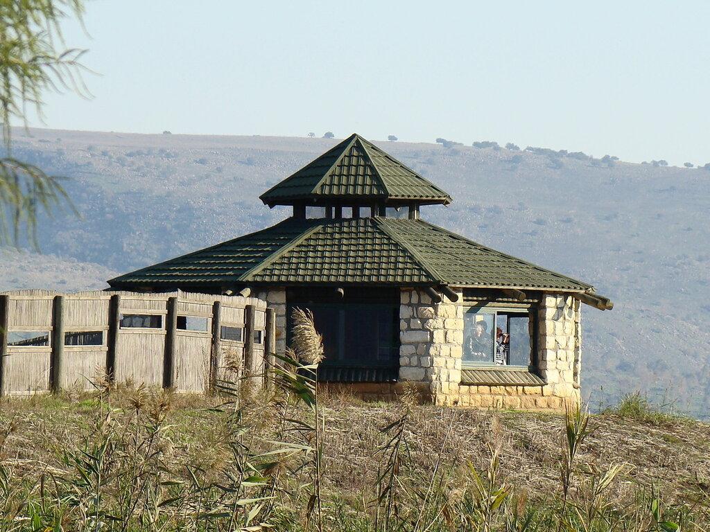 Птичья обсерватория