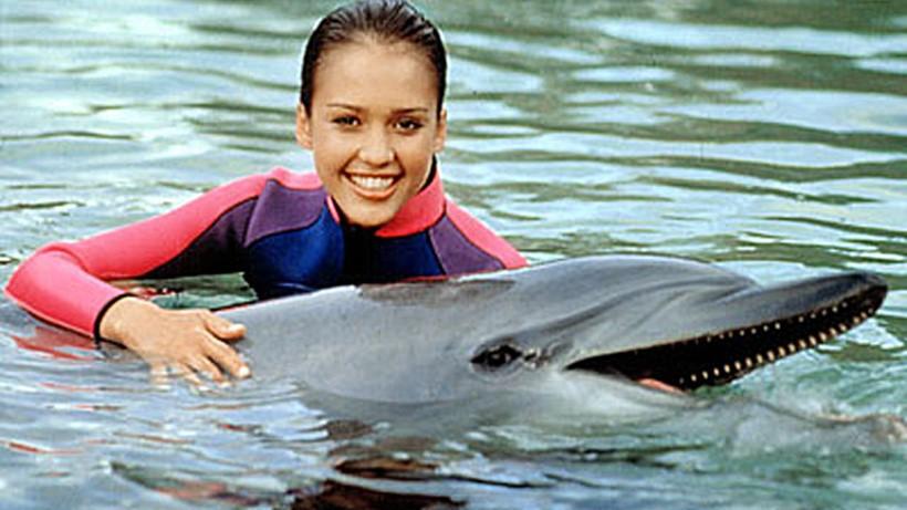 Беременная женщина и дельфин акушер 0 12e242 1f56f520 orig