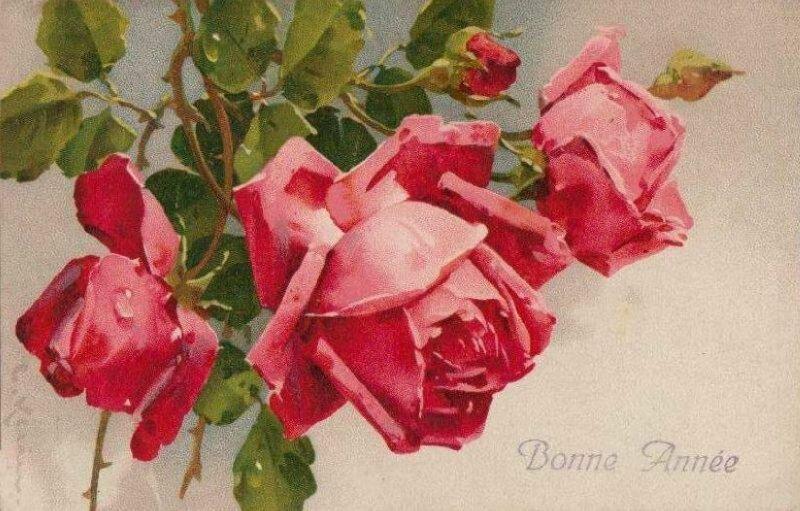 К. Кляйн. Розы. С Новым годом !