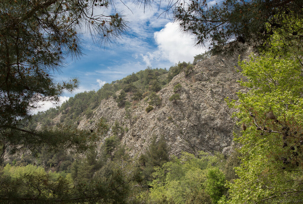 Кипр ч1-31.jpg