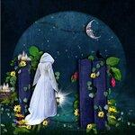 «черничные ночи» 0_6a5b1_4b5ca239_S