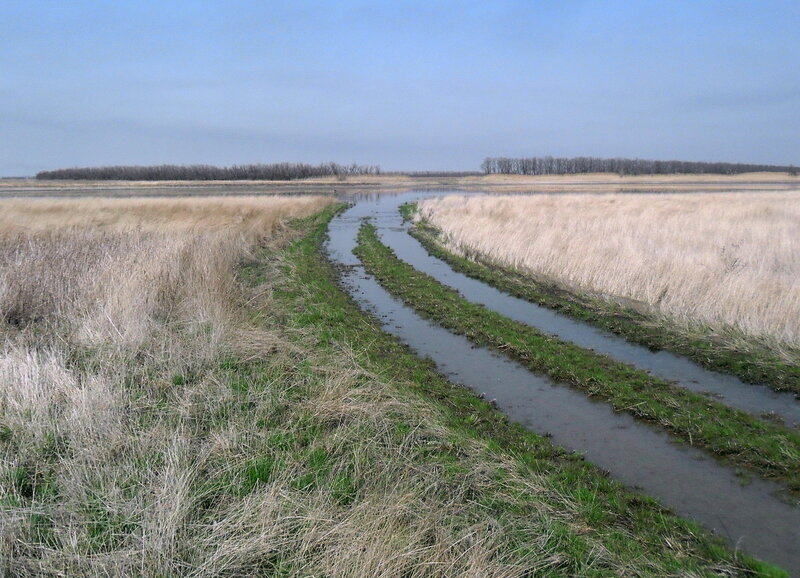 Разлив весенних вод
