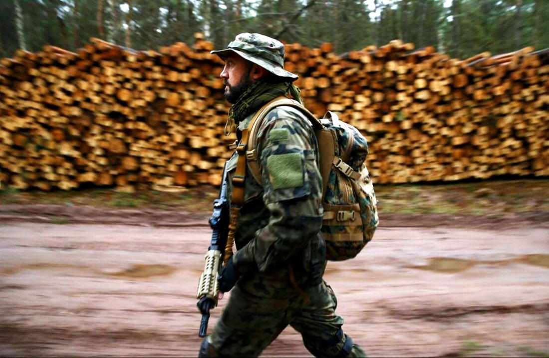 Военизация по-польски: Назло Европе и в угоду Америке (9)