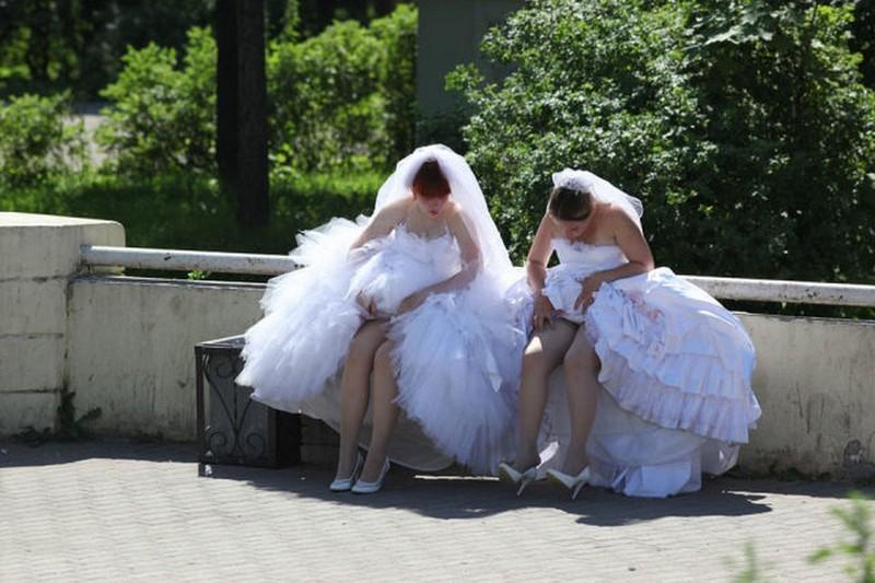 свадебные приколы фото приколы