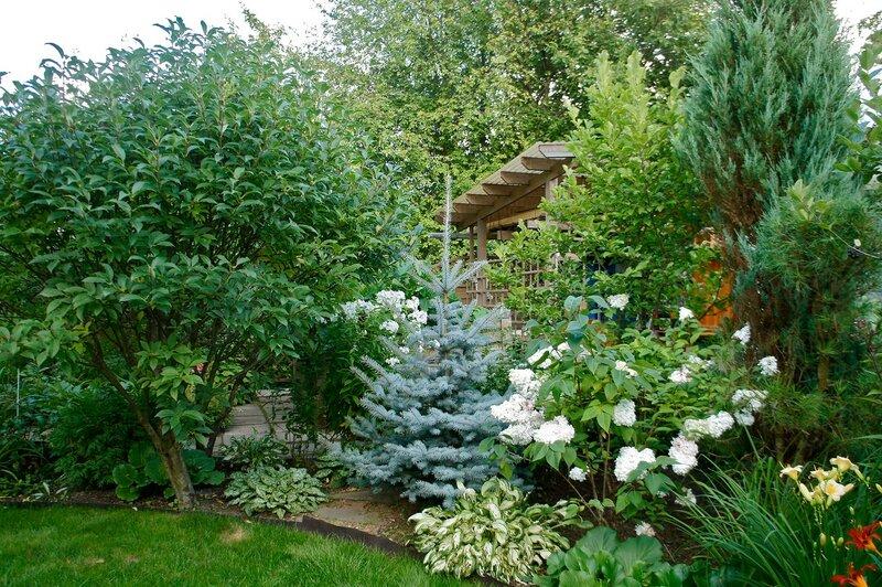 Великолепный сад Сад Надежды и Михаила