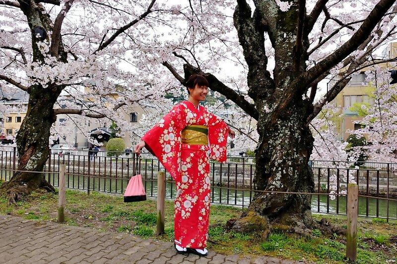 На фоне сакуры