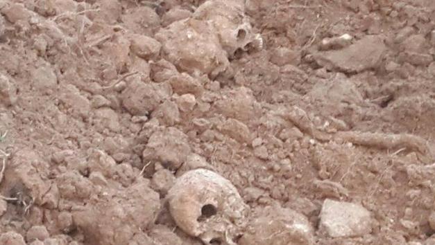 СКинициировал проверку пофакту найденных вМинске человеческих костей