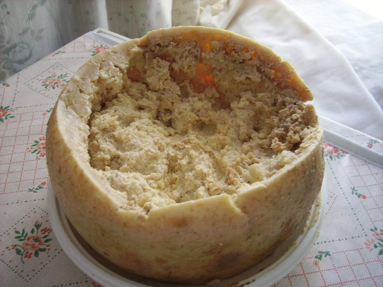 Касу марцу. Блюдо относится к итальянской кухне и представляет собой сыр с живыми личинками сырн