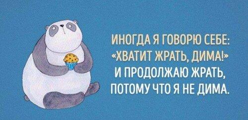 1445462392_yumor13.jpg