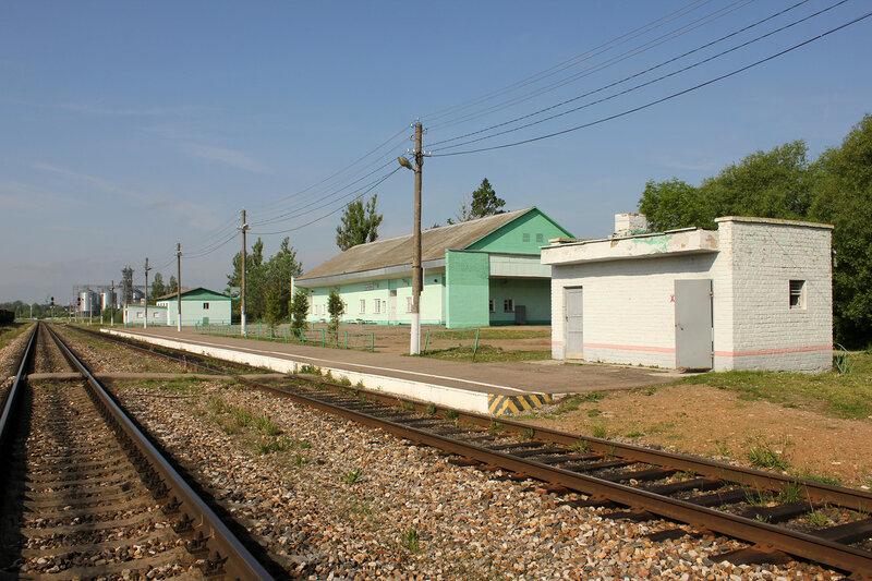 Платформа и вокзальный комплекс на станции Сычёвка