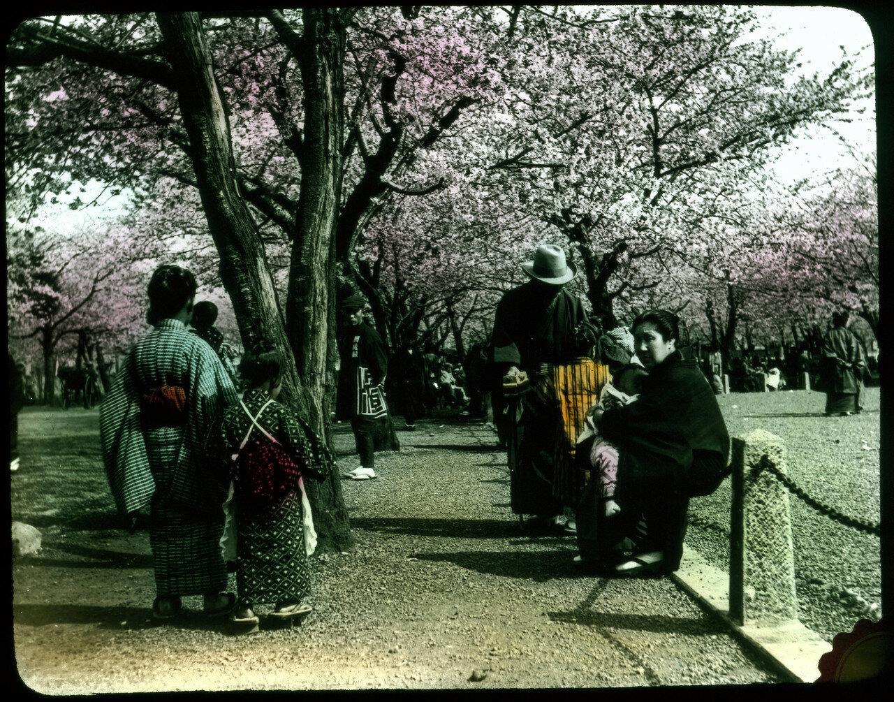 Люди в традиционной одежде в парке