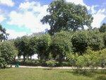 Следующий день порадовал нас долгожданной солнечной и теплой погодой. Путь наш лежал по Пушкинским местам. Мы посетили Святогорский монастырь, где похоронен А.С.Пушкин и его родители, а потом отправились в родовое имение Пушкиных – Михайловское