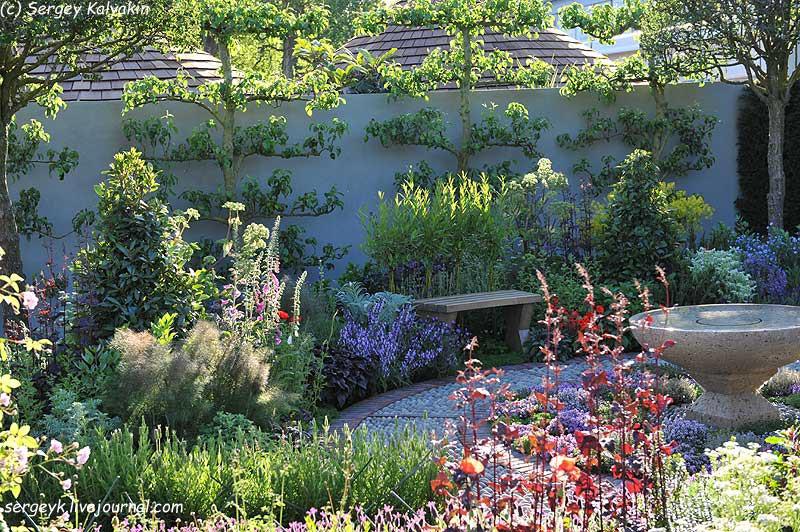 A modern Apothecary Garden (3).jpg