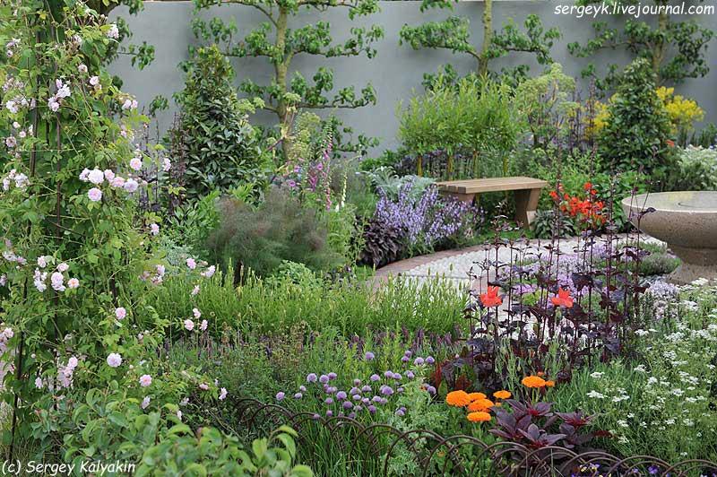 A modern Apothecary Garden (6).jpg